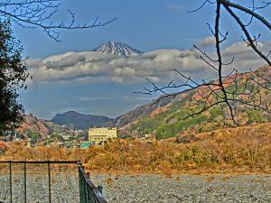 ポスティングチラシ 富士市中野台